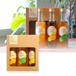 Plum Liqueur Fruity~フルーティー~プラムリキュールフルーティー